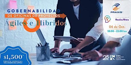 Curso: Gobernabilidad de Oficinas de Proyectos Agiles o Hibridos tickets