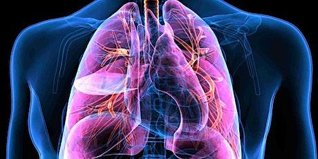 30 minuti gratis di presentazione dei 4 ripassi di 3 ore su Anatomia Umana biglietti