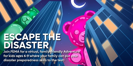 Escape the Disaster: A Virtual Adventure tickets