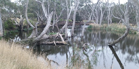 The River Moorabool film screening & discussion tickets