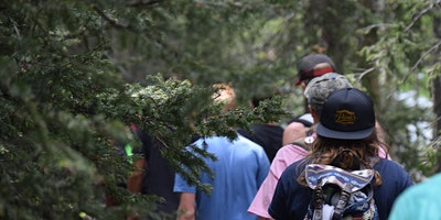 South: TasTracks – Walks in and around Hobart