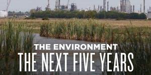 The Environment: The Next Five Years
