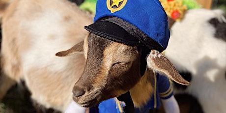 Halloween Spooktacular/Goat Yoga Nashville/Berry  Farms/(South Franklin) tickets
