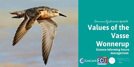 Values of the Vasse Wonnerup tickets
