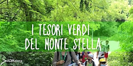 I tesori verdi del Monte Stella biglietti