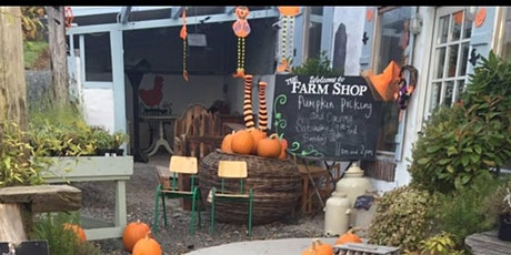 Pumpkin Picking and Tractor Ride tickets
