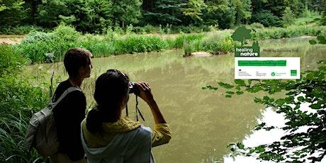 Family bird Watching Bonanza at Shibdon pond - Healing Nature tickets