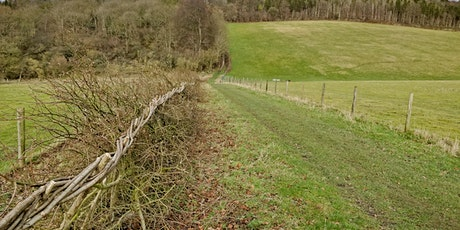 CPRE Oxfordshire 90th Anniversary Lecture: The British Hedgerow tickets