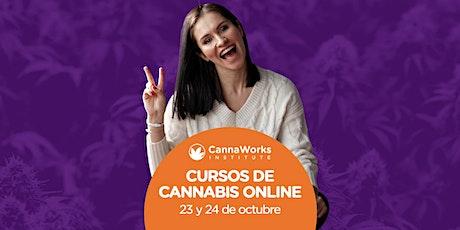 RESERVA ONLINE | Cannabis Training Camp | CannaWorks Institute entradas