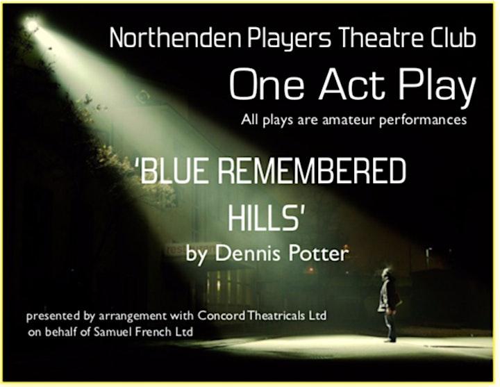 Blue Remembered Hills by Dennis Potter image