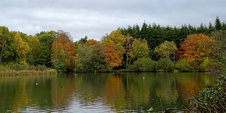Walking with Cameras at Stover Country Park tickets