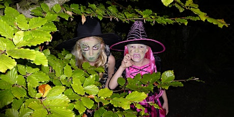 Join the Museum of Wigan Life for a FREE online family Halloween quiz tickets
