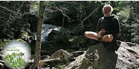 Atelier Shinrin Yoku et Qigong: Marche lente sensorielle en forêt billets