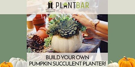Pop-Up Pumpkin Succulent Planter Bar at Newtown Brewing Company tickets