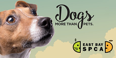 Dogs: More Than Pets Exhibit tickets