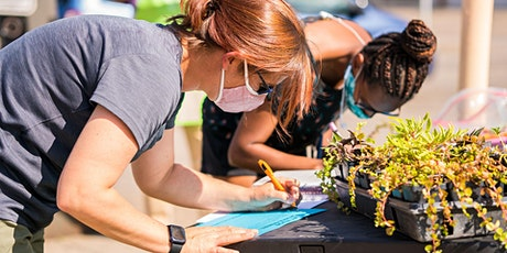 Public Art + Healthy Communities tickets