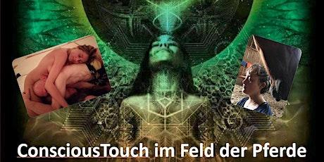 ConsciousTouch im Feld der Pferde - Herbst-Retreat auf dem Hof Zahrte Tickets