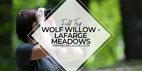 Nature Calgary Birding - Wolf Willow to Lafarge Meadows FCPP tickets