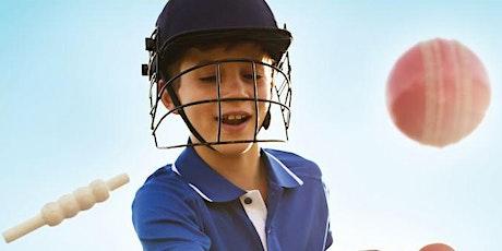 McLaren Districts Cricket Clinic u12 & u14s with AARON O'BRIEN tickets