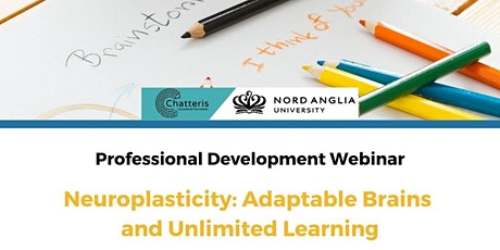 Neuroplasticity: Adaptable Brains and Unlimited Learning tickets
