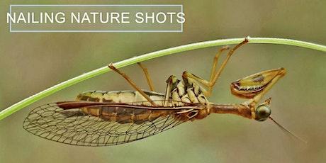 Nailing Nature Shots - Nature Photography Webinar tickets