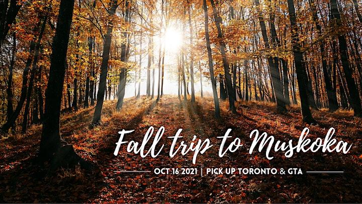 Fall trip  to Muskoka image
