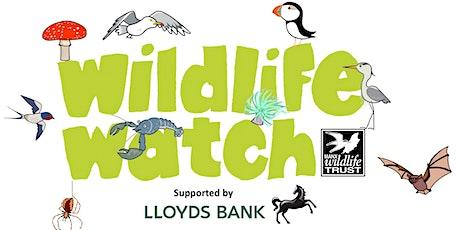 Darkness Wildlife Detectives tickets