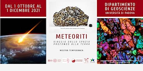 Meteoriti. Viaggio dallo spazio profondo alla Terra biglietti