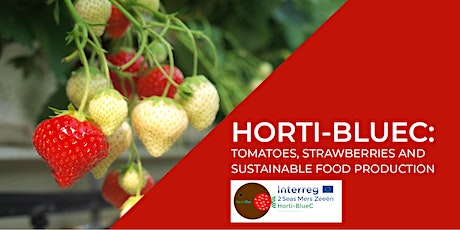 Horti-BlueC: Tomatoes, strawberries and sustainable food production tickets