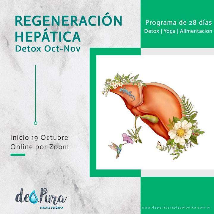 Imagen de Programa DETOX Online Regeneración de Hígado – 28  Días –