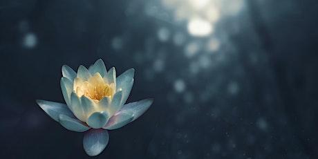 Online Meditative Healing Journey 10.26.21 tickets