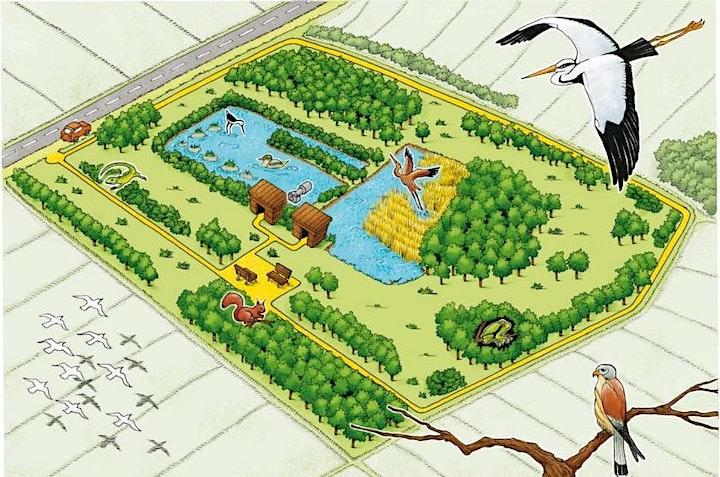 Immagine Argini e cavedagne: Visita guidata all'oasi