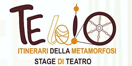 Stage di Teatro biglietti