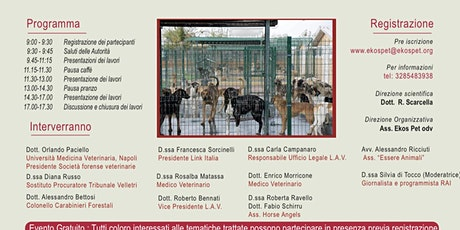 Maltrattamento animale:normativa giuridica, competenza e medico-veterinarie biglietti