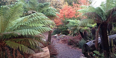 Nick Wray | The Development of the University of Bristol Botanic Garden tickets