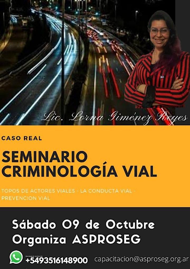 Imagen de SEMINARIO CRIMINOLOGIA VIAL