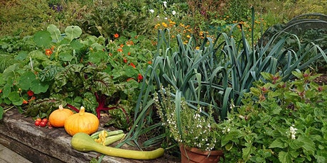 An introduction to growing fruit and vegetables tickets