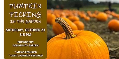 Pumpkin Picking in the Garden tickets
