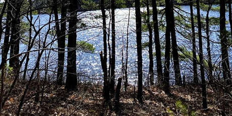 Discover Whitehall Lake for hike/trail yoga tickets