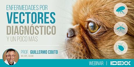 VECTORES: Diagnóstico de Enfermedades y un poco más | Prof. Guillermo Couto entradas