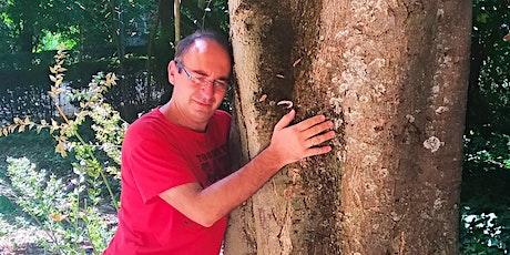 Shinrin-Yoku Granada: baños de bosque para generar calma y bienestar. entradas