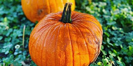 Pick your own pumpkins at Hilltop Farm tickets