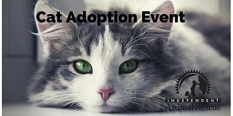 Kitten and Cat Adoption Event with Independent Animal Rescue tickets