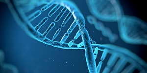 DNA and Indigeneity: The Changing Role of Genetics in...