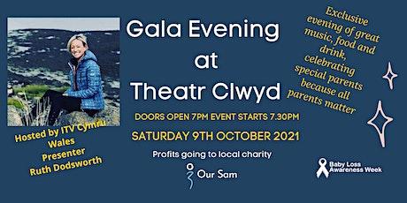 Gala Evening at Theatr Clwyd tickets