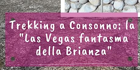 Trekking a Consonno: la Las Vegas della Brianza biglietti
