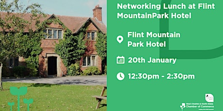 Networking Lunch at Flint Mountain Park Hotel tickets