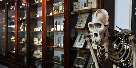 D'Arcy Thompson Zoology Museum Saturday Openings tickets
