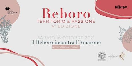 Reboro, Amarone & Peter Brunel | tour delle cantine biglietti