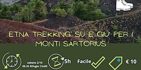 Etna trekking: su e giu' per i Monti Sartorius biglietti